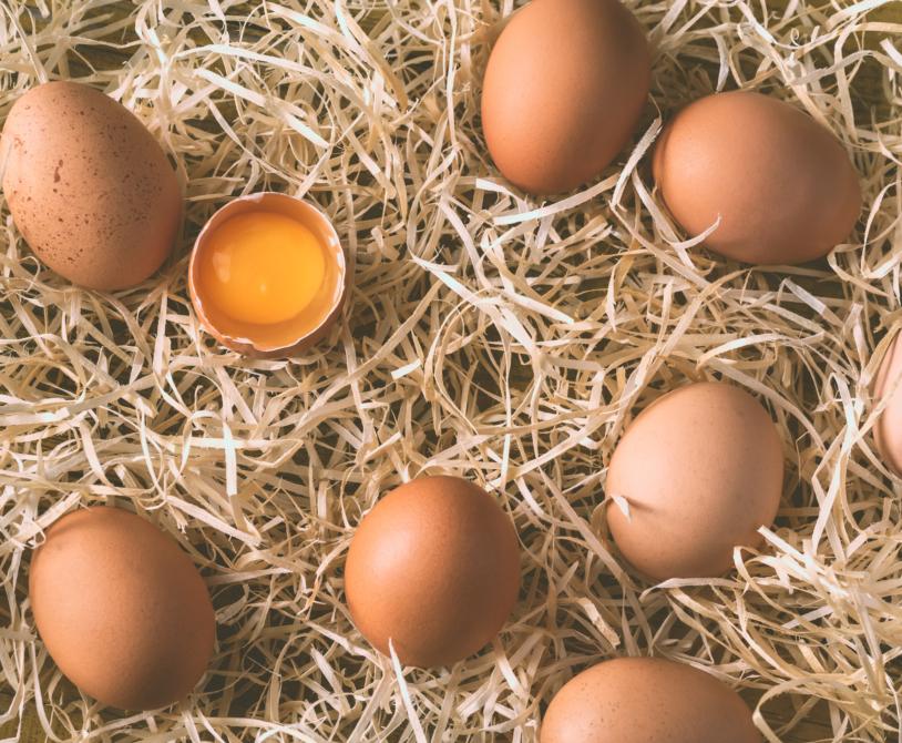 Domača jajca